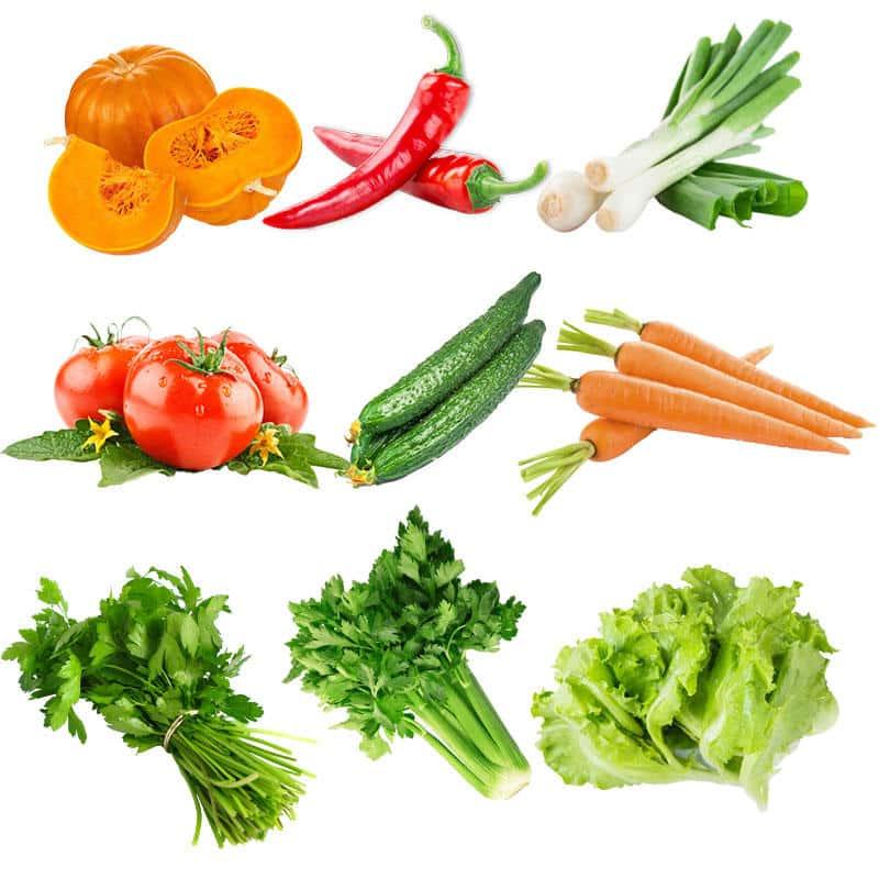 seminte de legume profesionale